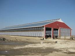 Livestock Barns Schockman Lumber Company Pole Barns And Buildings For Light