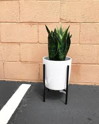 Plant Home Decor by Threshold Artificial Plant In Stand Target Home Decor Popsugar