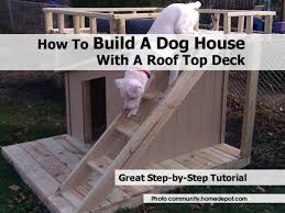 Dog On A Roof Doghouse Community Homedepot Com Jpg