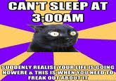 Anxiety Cat Memes - anxiety cat know your meme