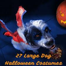 Dog Halloween Costume Ideas 42 Diy Dog Halloween Costume Ideas Images