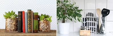 ideas to decorate a home with plants u2013 decordove