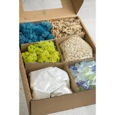 terrarium kit with sand gravel mosses u0026 sea glass walmart com