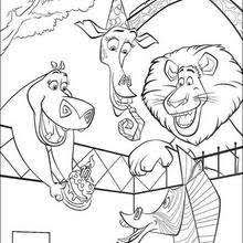 madagascar 2 marty alex coloring pages hellokids