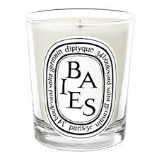 diptyque baies candle 6 5 oz diptyque