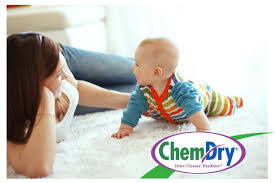 carpet cleaning jupiter fl jupiter carpet upholstery cleaning