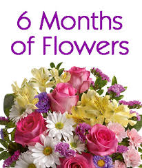 flowers delivered flowers delivered monthly 6 months of flowers