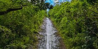 Hawaii Waterfalls images 10 hawaii waterfalls you 39 ll love atlantis submarines hawaii jpg