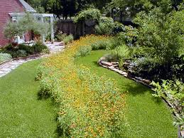 native plants in landscape management native plants watershed texas