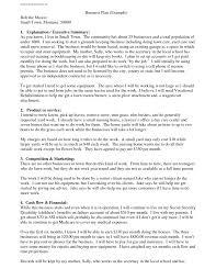 business plan samples sample pdf download example thebridgesumm