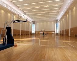 Home Basketball Court Design Home Design Ideas - Home basketball court design