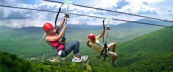 zipline new york