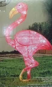 flamingo island houston zoo holiday pinterest flamingo and