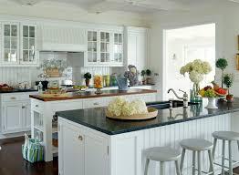 How To Make Beadboard Cabinet Doors Kitchen Cool Beadboard Kitchen Cabinets Beadboard Cabinets Diy
