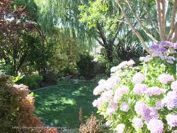 Front Yard Landscaping Ideas Florida Front Yard Landscaping Ideas U2014 Home Landscapings