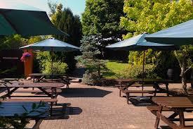 the courtyard ferns