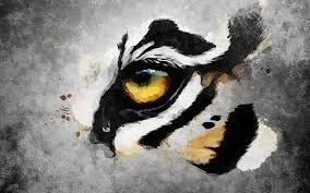 tiger eye by dyceibg on deviantart