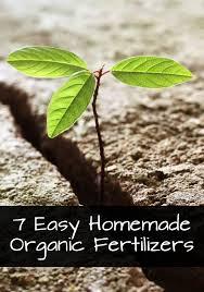endearing organic vegetable garden fertilizer of fireplace plans