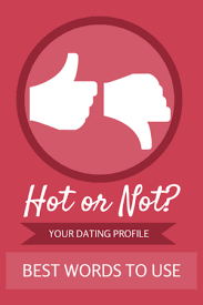 Best Words To Use In Your Dating Profile      Online Dating Profile     eDateMate