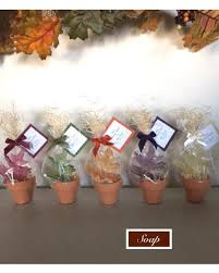savings on 24 wedding favors rustic potted leaf soaps