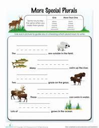 irregular plural nouns worksheet education com