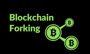 what is meant by forking in a blockchain blockchain