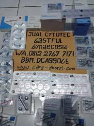 Aborsi Manjur Palembang Jual Obat Penggugur Kandungan Cytotec Asli Obat Aborsi Manjur