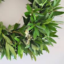 bay leaf wreath bay leaf wreath door wreath curly willow wreath statice