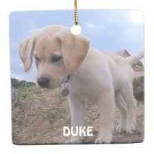 personalized dog christmas ornaments my calendar land