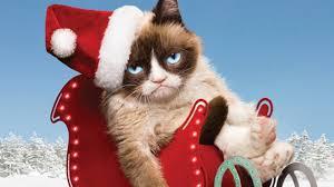 grumpy cat wrapping paper 12 days of grumpy cat christmas comics 4 ugh pepsi nerdist