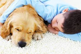 best types of carpet for homes with children