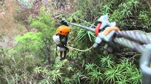 Treetop Canopy Tours by Malolotja Canopy Tour Youtube