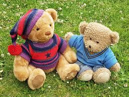 teddy bears u0027 picnic u2013 virgo forest