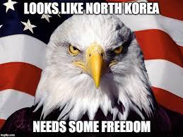 Freedom Meme - bald eagle freedom memes imgflip