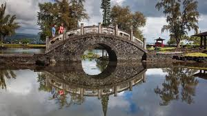 hawaii visitors and convention bureau liliuokalani park and gardens hilo attraction expedia com au