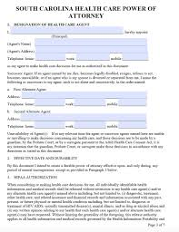 Living Will And Medical Power Of Attorney by South Carolina Medical Power Of Attorney Form Living Will Forms