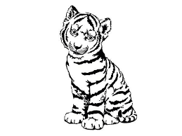 A Cute Tiger Cub In Front Of Camera Coloring Page Download Coloring Pages Tiger
