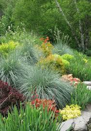 143 best gardening tips images on pinterest gardening tips