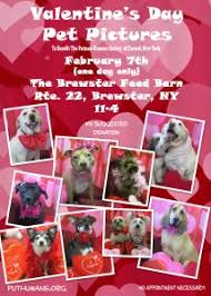 The Feed Barn Brewster Ny Events Putnam Humane Society