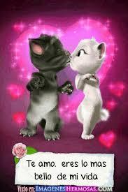 Imagenes Animadas Sobre Amor   te amo frases pinterest mejores imagenes de amor te amo y