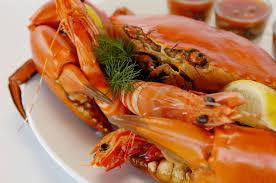 Estiatorio Volos Best Greek Seafood Restaurant In Toronto Top Seafood Restaurants In Toronto U2013 Dikimo
