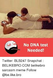 Dna Meme - no dna test needed twitter blb247 snapchat belikebrocom belikebro