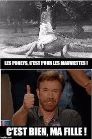 Memes De Chuck Norris - les 15 meilleures répliques de chuck norris chuck norris