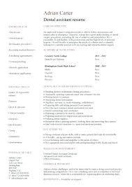 dentist resume sample india dental assistant resume dentist