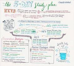 Anatomy And Physiology Midterm Exam Studyallure My Study Plan For An Upcoming Midterm On Anatomy And