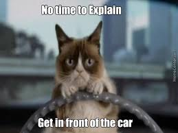 Grumpy Kitty Meme - are grumpy cat memes dead by funnyfish meme center