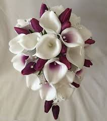 picasso calla wedding flower white picasso calla purple tulip