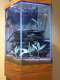 hexagonal tank with rock stacking aquascapes pinterest