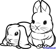 coloring impressive cute bunny drawings attractive drawn