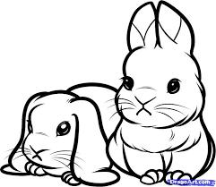 coloring amusing cute bunny drawings bow illustration
